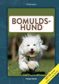 Bomulds-hund - Tæt på serien